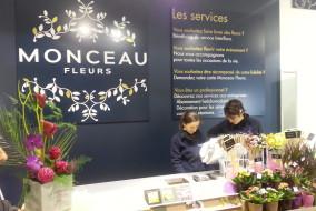 Groupe monceau fleurs